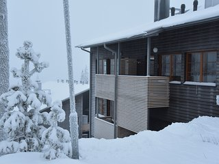 Nice and modern appartment in top location - Ruka vacation rentals