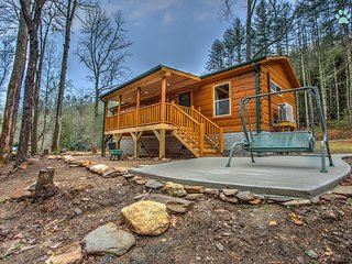 Perfect 2 bedroom House in Pisgah Forest - Pisgah Forest vacation rentals