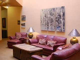Independence Square Unit 210 - Aspen vacation rentals