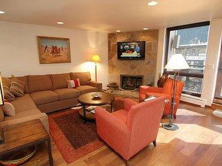 Cozy 2 bedroom Apartment in Aspen - Aspen vacation rentals