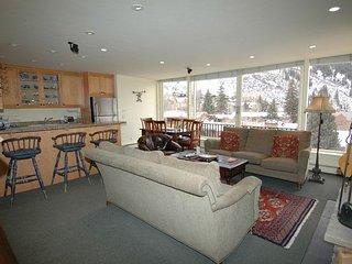 Durant Condominiums Unit A301 - Aspen vacation rentals