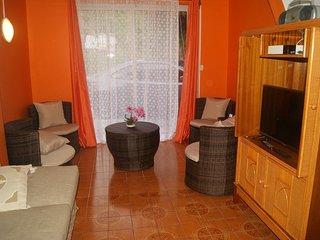 LOUE type 3 meublé pour vos vacances. - Saint-Claude vacation rentals