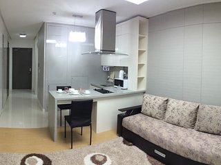 Romantic 1 bedroom Astana Condo with Internet Access - Astana vacation rentals