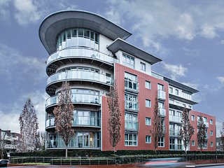 Superior apartment - Woking vacation rentals