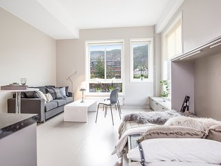 Great Studio Apartment in Drammen - Drammen vacation rentals