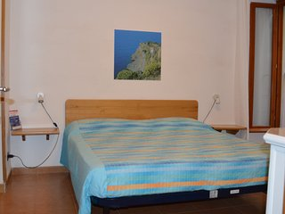 Comfortable 1 bedroom Manarola Apartment with Internet Access - Manarola vacation rentals