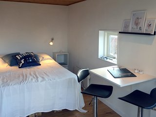 Guesthouse   Spa   Seaview   Downtown   Parking - Ebeltoft vacation rentals