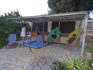 Island dream 1h from Athens in Evia - Marmari vacation rentals