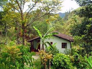 Vilcabamba's Eco-center - The Hummingbird Suite - Cabañas RíoYambala - Vilcabamba vacation rentals