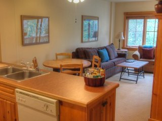 Nice Condo with Internet Access and Fitness Room - Keystone vacation rentals