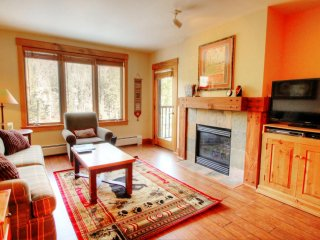 1 bedroom Apartment with Internet Access in Keystone - Keystone vacation rentals