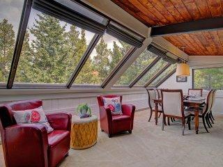 Elk Horn Cabin - Breckenridge vacation rentals