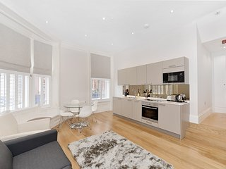 Brand New Soho Apartment Apt 3 - London vacation rentals
