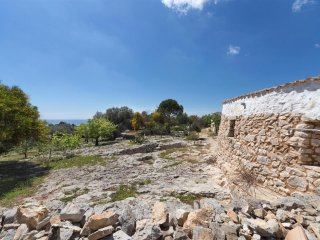 592 Typical Trullo with Sea View in Torre Vado - Torre Vado vacation rentals