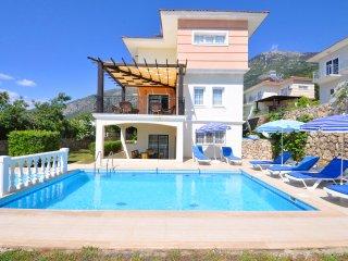 Villa Hayat - Ovacik vacation rentals