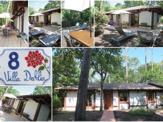 Villa de charme sous les pins proche des plages et commerces. - Pyla-sur-Mer vacation rentals