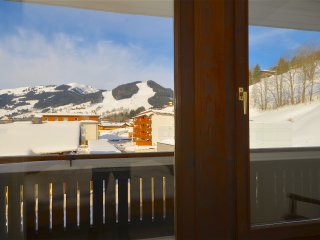 Cozy 1 bedroom Saalbach Apartment with Television - Saalbach vacation rentals