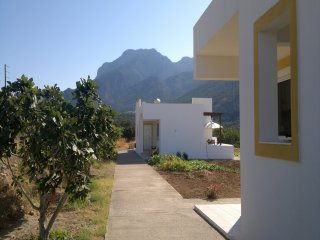 Cozy 1 bedroom Lefkos House with A/C - Lefkos vacation rentals