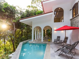 NATURE LOVERS DREAM! FABULOUS LUXURY IN MONKEY CORRIDOR-PRIVATE POOL & FULL AC - Manuel Antonio vacation rentals