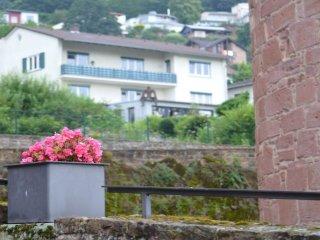 Zentral und ruhig gelegene Ferienwohnung oberhalb der historischen Stadtmauer - Budingen vacation rentals