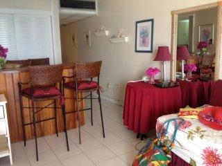 Deluxe studio apartment overlooking Doctor's Cave Beach - Montego Bay vacation rentals
