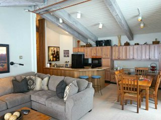 Bright 2 bedroom Vacation Rental in Snowmass Village - Snowmass Village vacation rentals