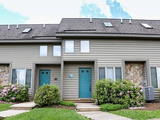 2 bedroom House with Internet Access in McHenry - McHenry vacation rentals