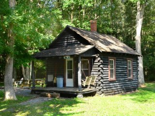 Walk to the waterfalls and explore the winding trails around Swallow Falls Inn Cabin 2! This charming log cabin is the perfect place to get away together! - Oakland vacation rentals