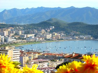 Air-Conditioned Apartment/ Flat  - AJACCIO - Ajaccio vacation rentals