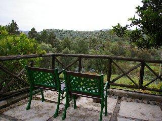 Casa Rural Las Grutas 1 - Online - Santa Brigida vacation rentals