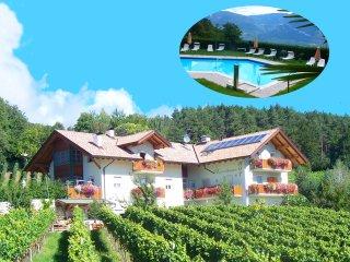 Kerschbamerhof mit Panoramablick, großem Pool, Tiere, Weinkeller,Spielplatz,... - Cortaccia sulla strada del vino vacation rentals