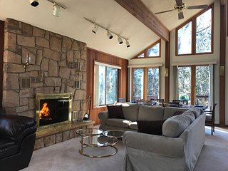 Bright and Beautiful - 8 person Jacuzzi, fireplace, wifi, fully stocked kitchen - Bushkill vacation rentals