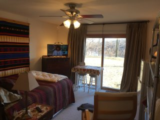 Executive master suite directly on river. Completely private. With jacuzzi. - Roscoe vacation rentals