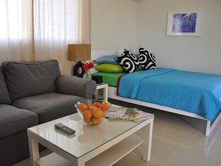 Cozy Cairo Studio rental with Internet Access - Cairo vacation rentals