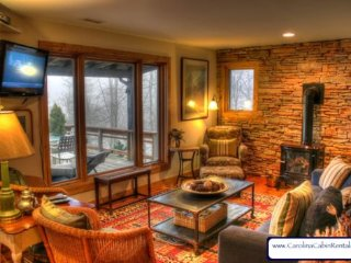 Sleeps 5, Antiques, Art, Gas Wood Stove, Hammock, Grill, 5 minutes to Boone - Blowing Rock vacation rentals