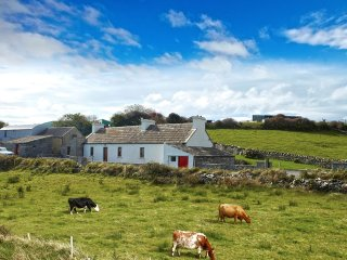 Liscannor, Cliffs of Moher, County Clare - 10782 - Liscannor vacation rentals