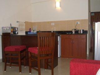 Furnish Little Apartment - Candolim vacation rentals