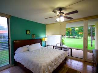 Amzaing location and price, check it out!!!! - Palmas Del Mar vacation rentals