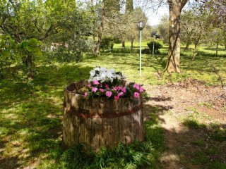 Comfortable Canale Monterano House rental with A/C - Canale Monterano vacation rentals