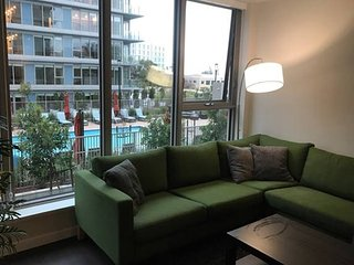 Silicon Valley newest luxury condo near cisco and - San Jose vacation rentals