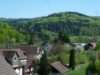 Luxuriöse Europa Park 2 Zi FeWo in idyllischer Lage am Hang - Lahr vacation rentals
