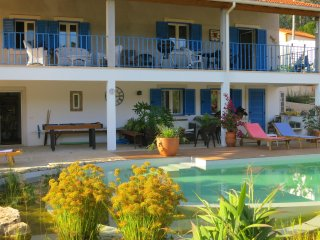 Casa Azul Bed & Breakfast - rustic tranquility - Ansiao vacation rentals