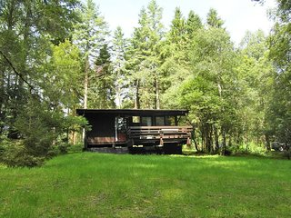 Secluded Forest Log Cabin with Hot Tub at shores of  Loch Awe - Dalavich vacation rentals