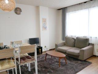 Hakodate 2bedroom cozy apartment - Hakodate vacation rentals