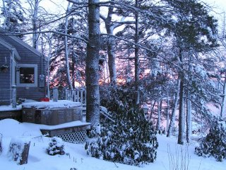 Cottage with Ocean Bay Views in Perennial Gardens - Boothbay vacation rentals