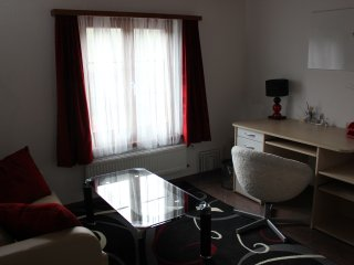 Beautiful apartment near Schaffhausen - Schaffhausen vacation rentals