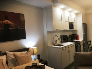 Downtown Parliament Condo with Great Amenities and Great rates for longer stays - Ottawa vacation rentals