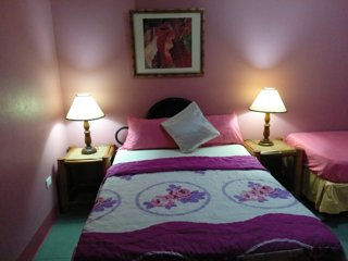 Private Ensuite Room in the Ocho Rios town center- WIFI - Ocho Rios vacation rentals
