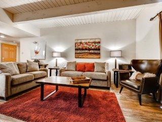 Ptarmigan House 10 - Steamboat Springs vacation rentals