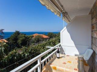 Apartments Villa Ana - One Bedroom Apartment with Balcony and Sea View (Apt 1) - Potomje vacation rentals